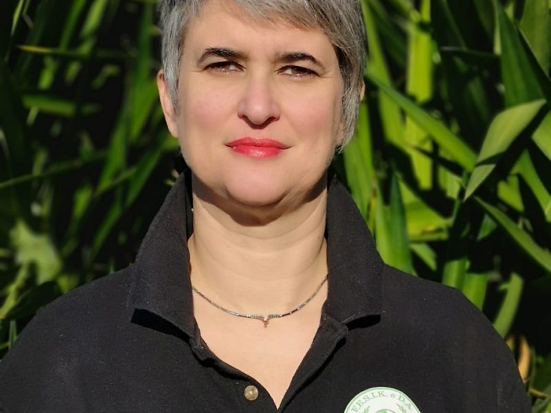 Marina Renatini, Istruttore